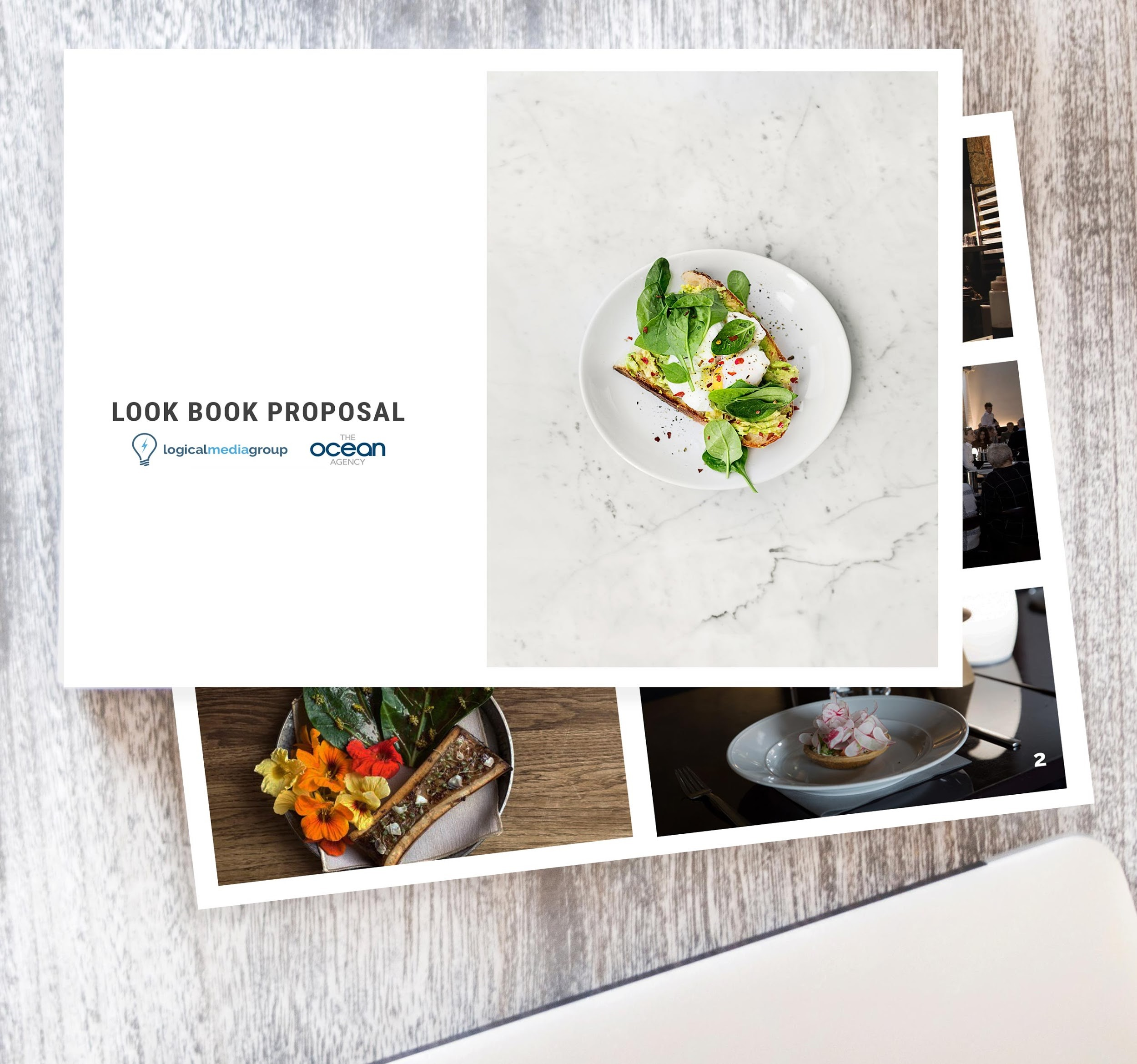 logical media group look book proposal